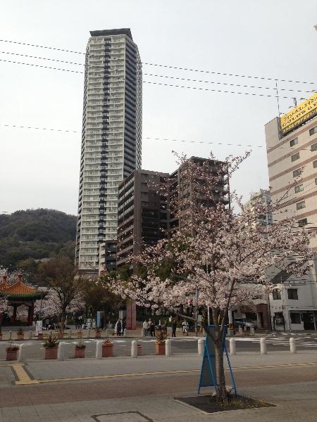 Hanami 2013-08